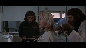 conquete-de-la-planete-des-singes-coiffure