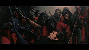 conquete-de-la-planete-des-singes-deconfiture