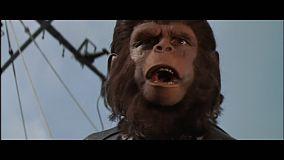 evades-de-la-planete-des-singes-agonie