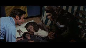 evades-de-la-planete-des-singes-naissance