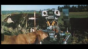 short-circuit-robot-chien