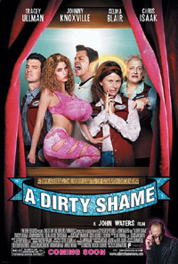 a-dirty-shame-affiche