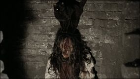 chat-noir-cadavre