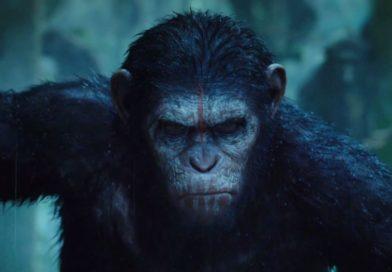 La Planète des singes : l'affrontement – Matt Reeves