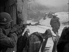 bastogne-champ-de-bataille