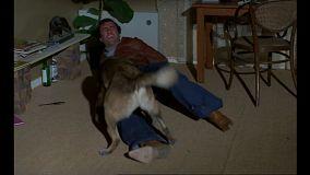 les-chiens-defense-canine