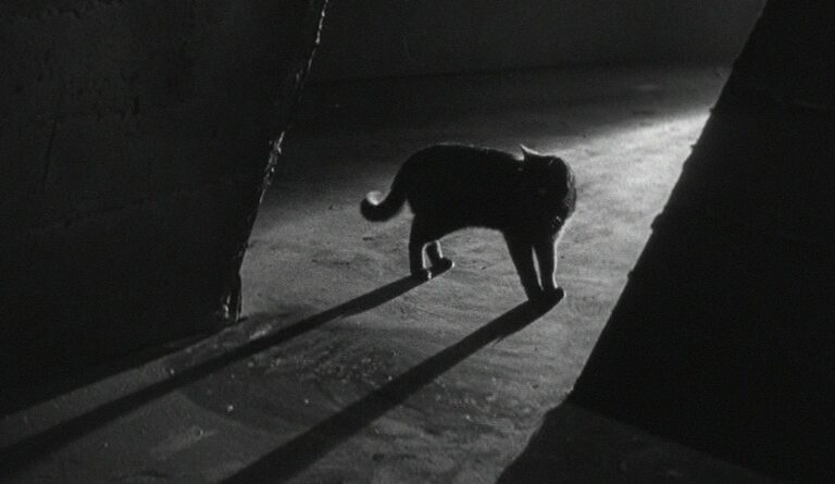 Le Chat noir – Edgar G. Ulmer